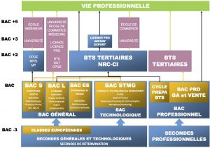 Organigramme Formation 2014-2015-V6