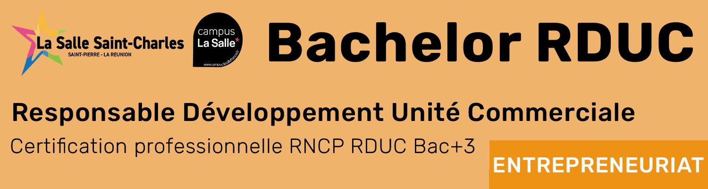 Bachelor Responsable Développement Unité Commerciale