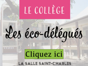 CollègeEcoDelegue
