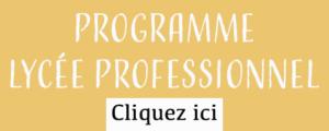 JPO - boutonpageprogrammeLP